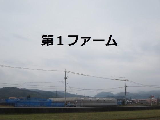 IMG_4453